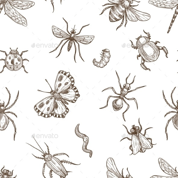 Insects That Fly and Creep Monochrome Sepia - Animals Characters