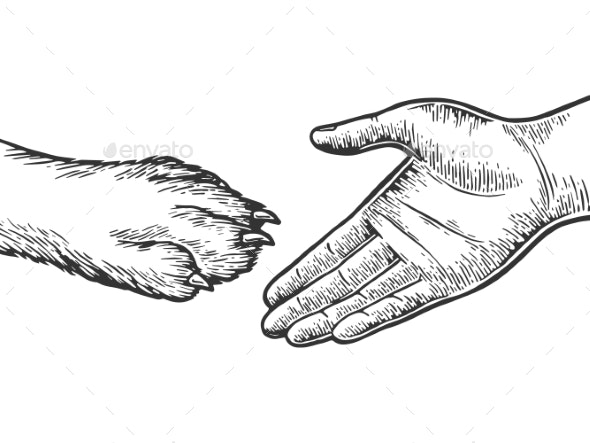 Dog Paw Handshake Engraving Vector Illustration