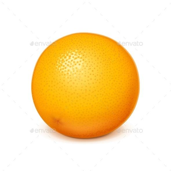 Orange Vector Illustration - Food Objects