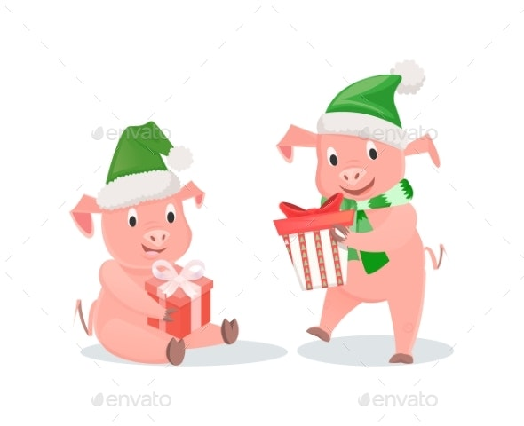 New Year Pigs with Gift Boxes in Hat and Scarf - Animals Characters