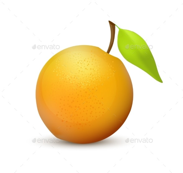 Orange Fruit - Food Objects