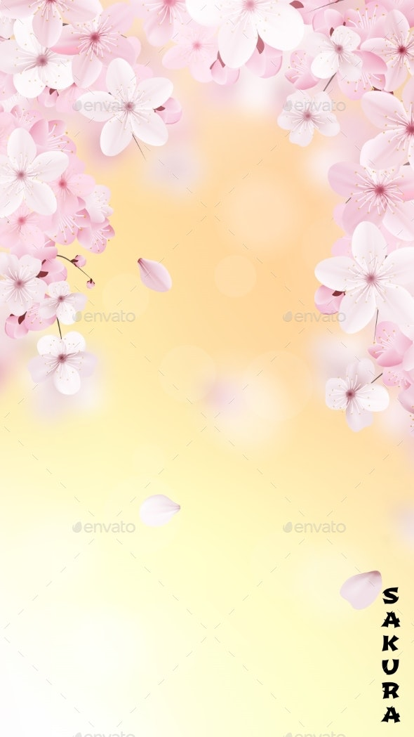 Blossoming Light Pink Sakura - Flowers & Plants Nature