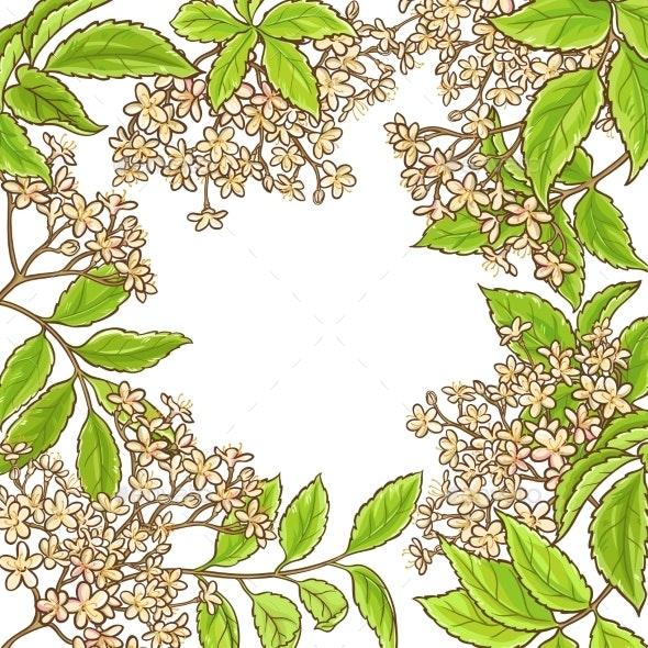 Elderberry Branch Vector Frame - Health/Medicine Conceptual