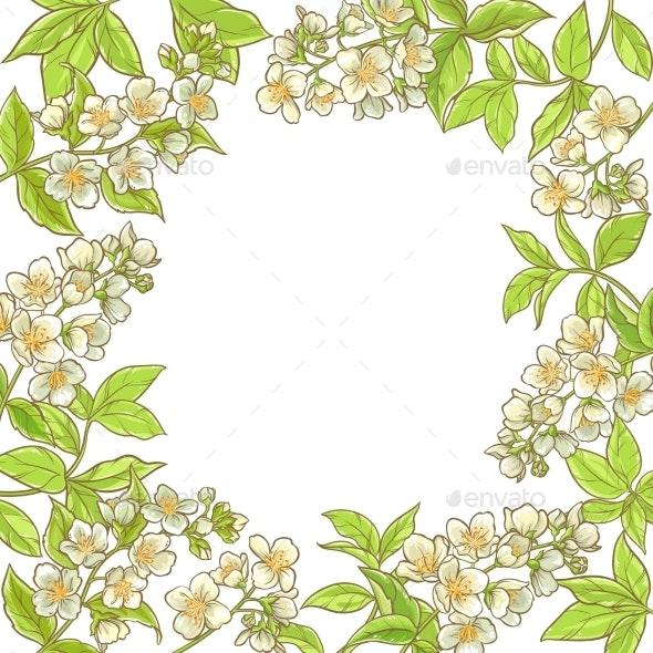 Jasmine Branch Vector Frame - Health/Medicine Conceptual