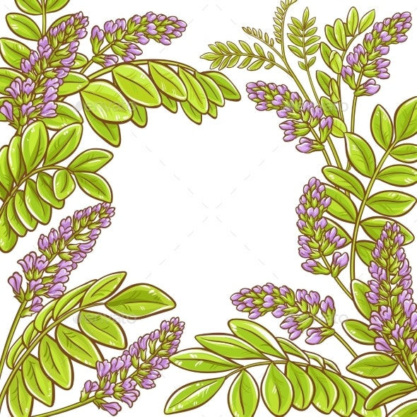 Licorice Vector Frame - Flowers & Plants Nature