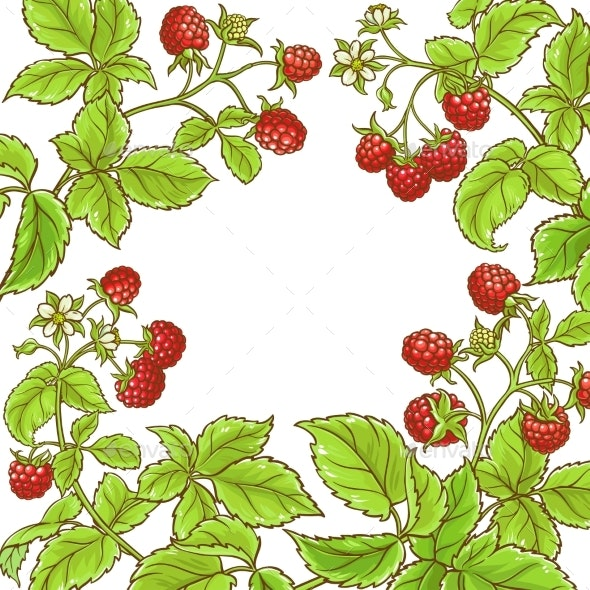 Raspberry Branch Vector Frame - Food Objects