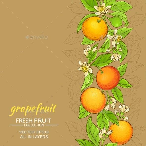 Grapefruit Vector Pattern