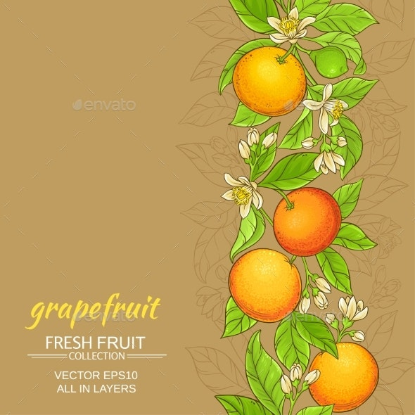 Grapefruit Vector Pattern - Food Objects