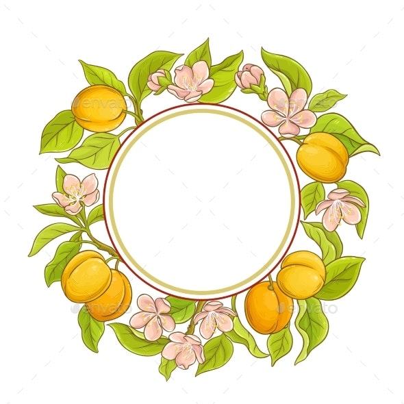 Apricot Vector Frame - Food Objects