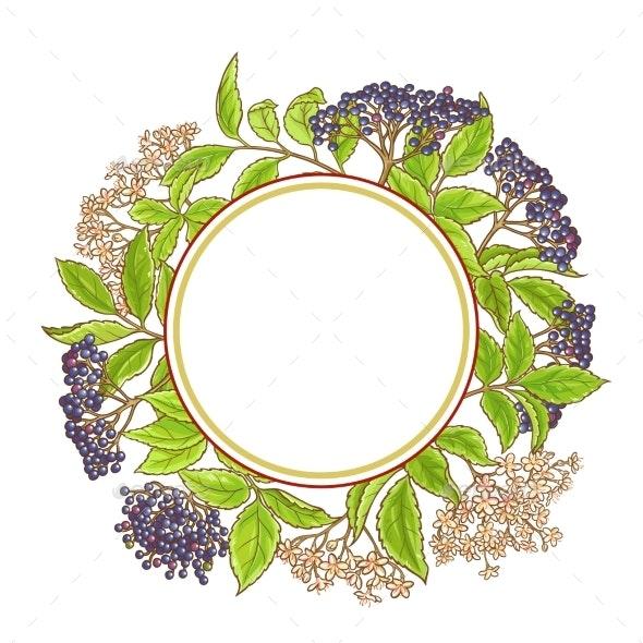 Elderberry Branch Vector Pattern - Flowers & Plants Nature