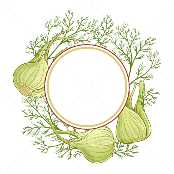 Fennel Vector  Frame - Food Objects
