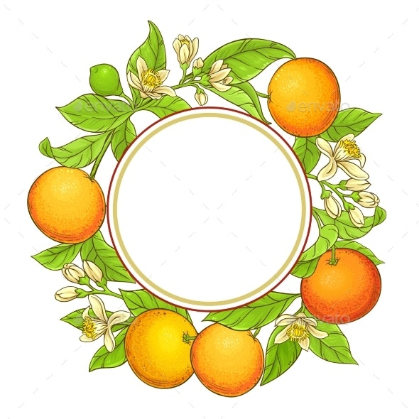 Grapefruit Vector Frame - Food Objects