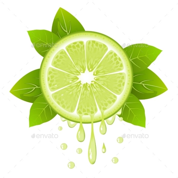 Lime Slice with Juice Drops - Food Objects