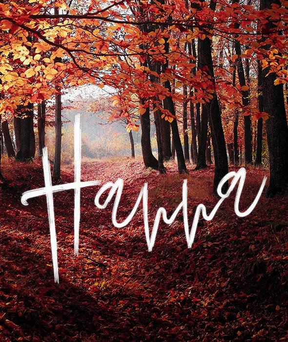Hanna - Script Fonts