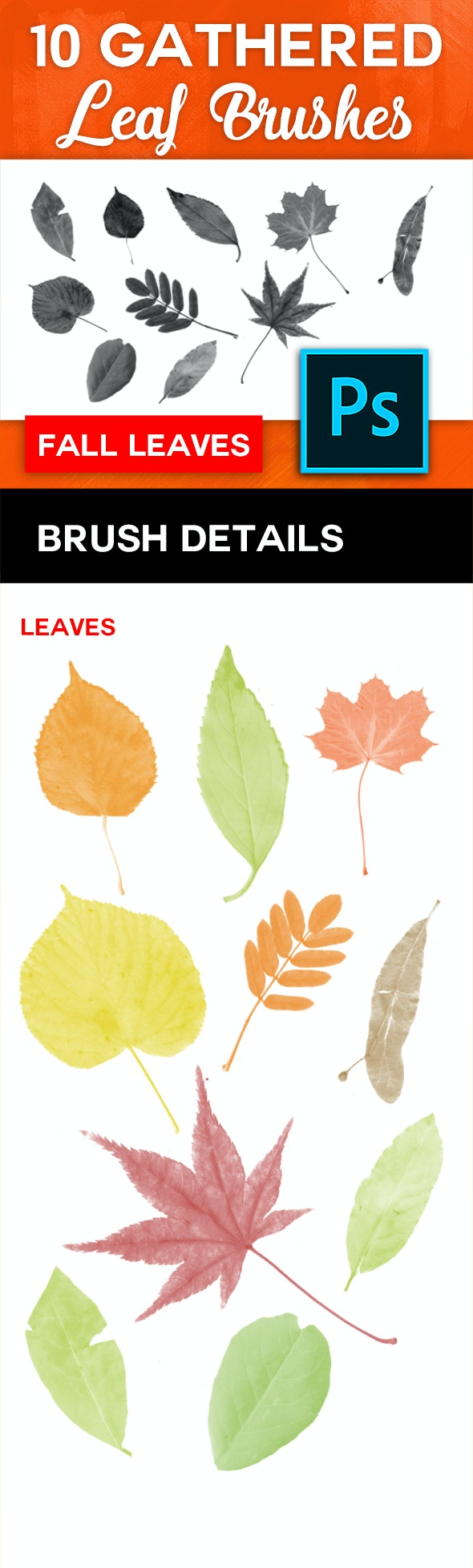 10 High-Res Leaf Brushes - Miscellaneous Brushes