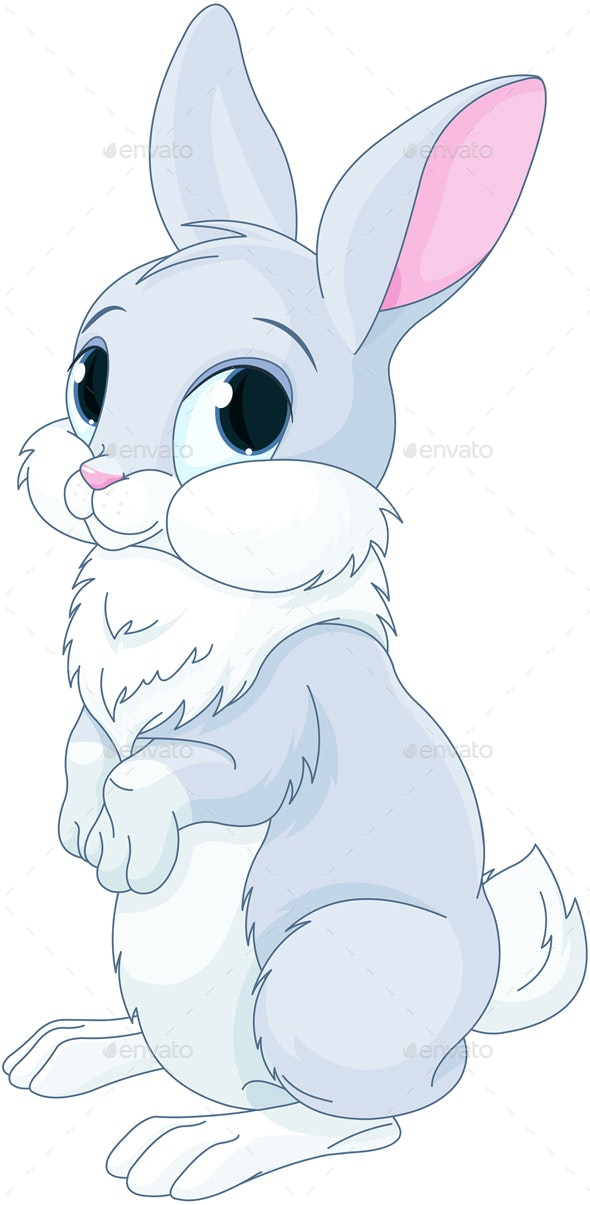Bunny - Animals Characters