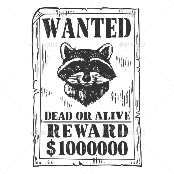 Poster with Raccoon Engraving Vector Illustration - Miscellaneous Vectors