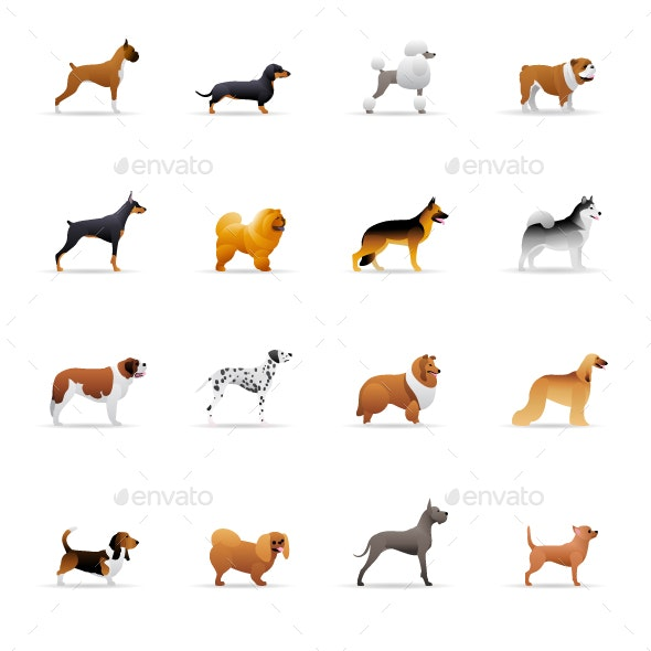 Dogs - Color Vector Icons - Animals Characters