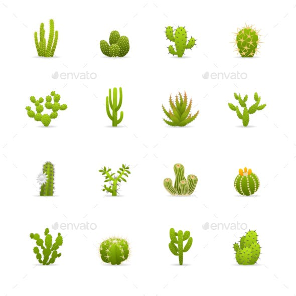 Cactuses Cacti -  Color & Black Vector Icons