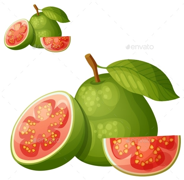 Guava Fruit - Food Objects