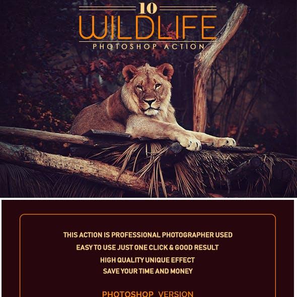 10 Wildlife Photoshop Action