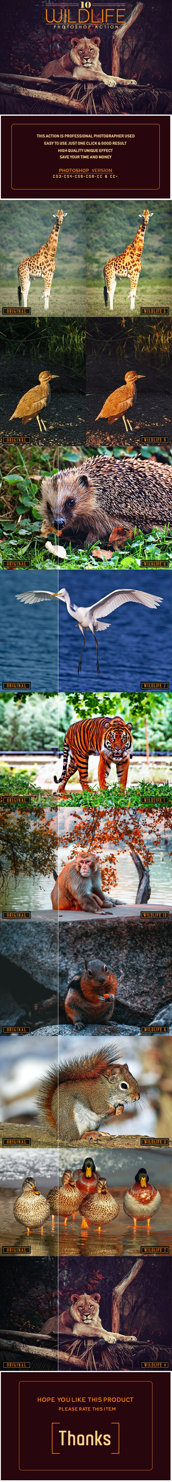 10 Wildlife Photoshop Action - Photo Effects Actions