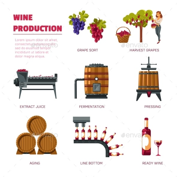 Wine Production Grape Harvest Extract Juice - Food Objects