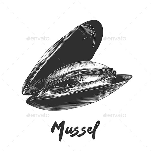 Mussel in Monochrome Isolated