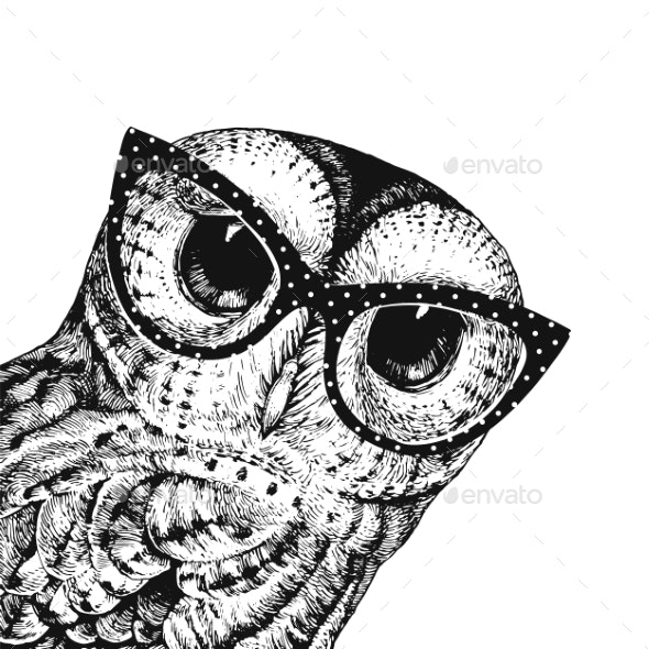 Owl Wearing Glasses - Animals Characters