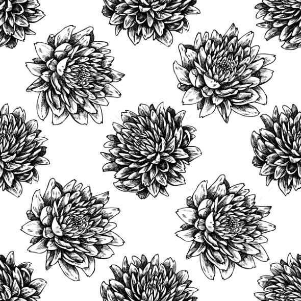 Seamless Pattern with Black and White Aster - Flowers & Plants Nature