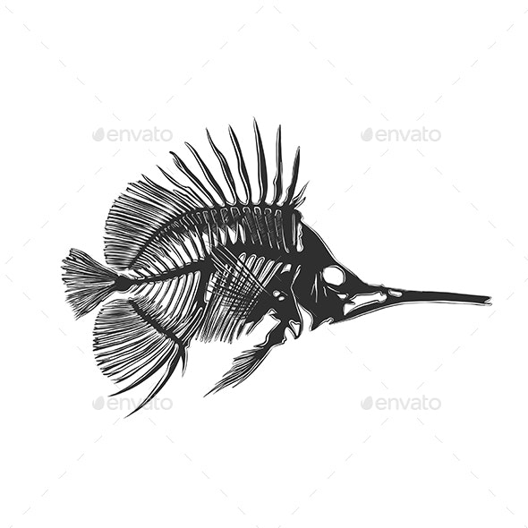 Fish Bones in Monochrome Isolated - Animals Characters
