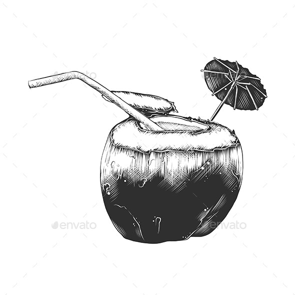 Hand Drawn Sketch of Summer Coconut Cocktail - Food Objects