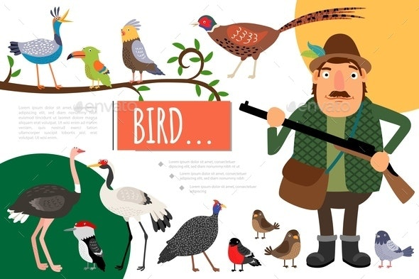 Flat Birds Colorful Natural Composition - Animals Characters