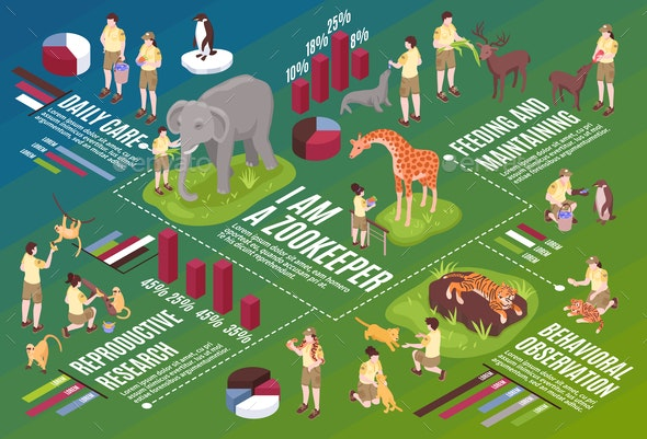 Isometric Zoo Infographic Flowchart - Animals Characters