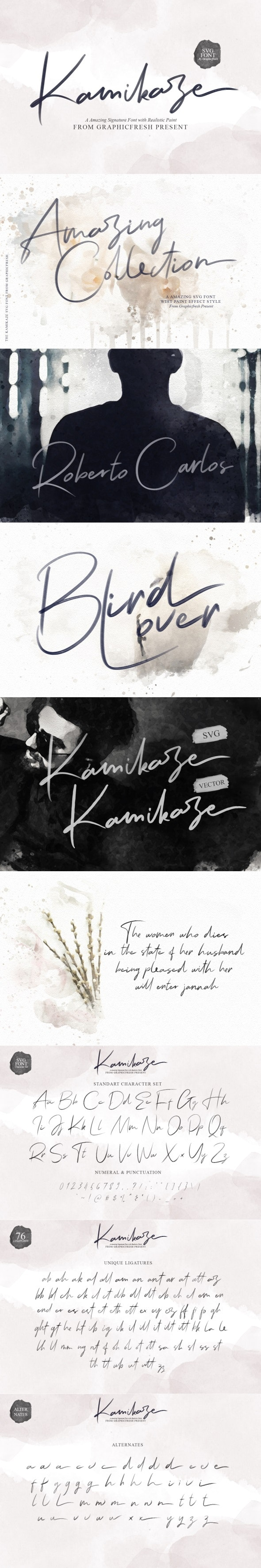Kamikaze SVG Font - Script Fonts