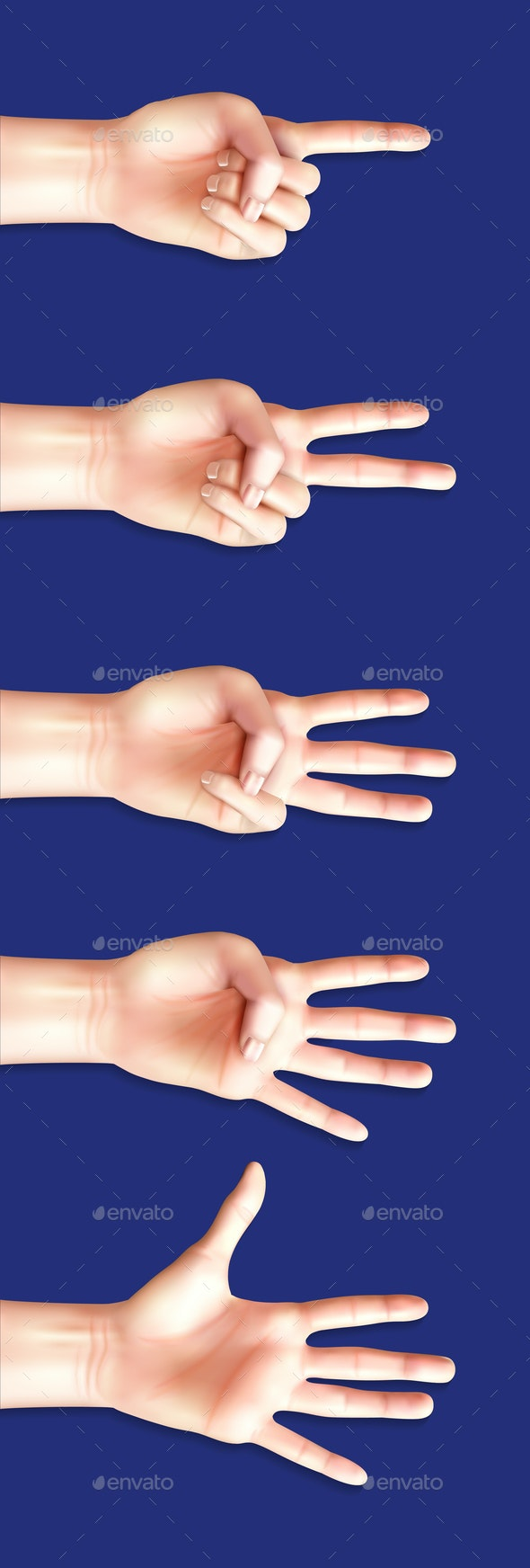 Communication Gestures Of Counting Hands - Business Conceptual