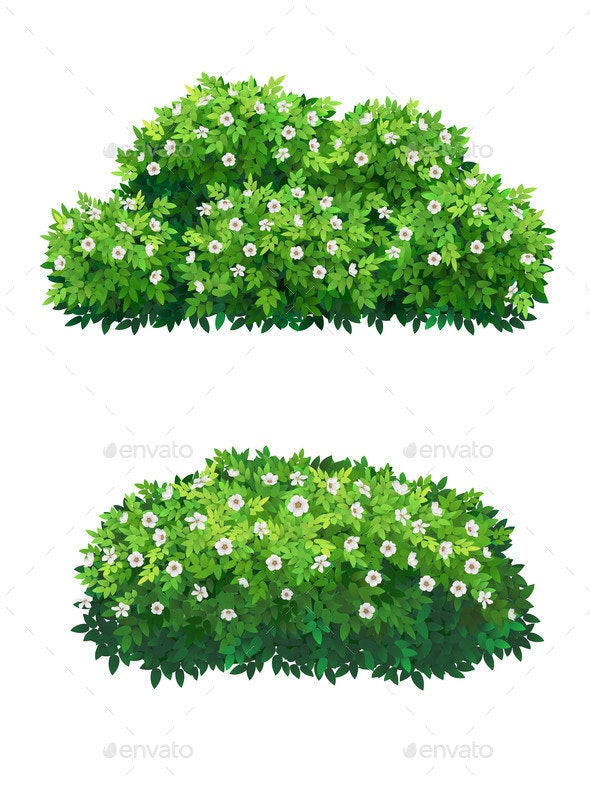 Green Bushes and Tree Crown with White Flowers - Flowers & Plants Nature