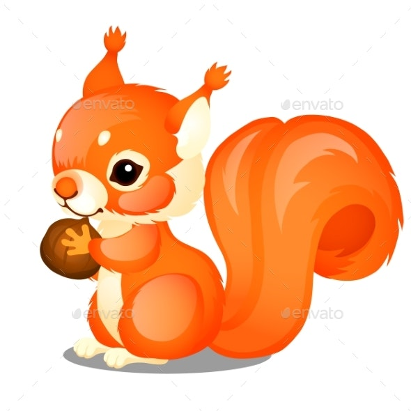 Fluffy Squirrel and Nut Isolated - Animals Characters
