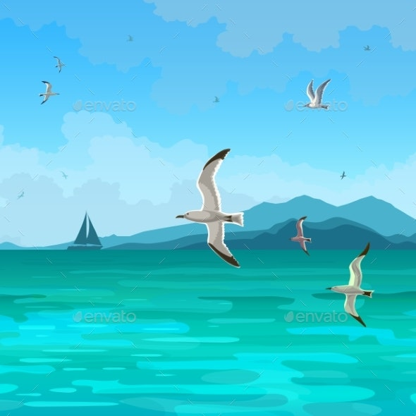 Sea Gulls - Landscapes Nature