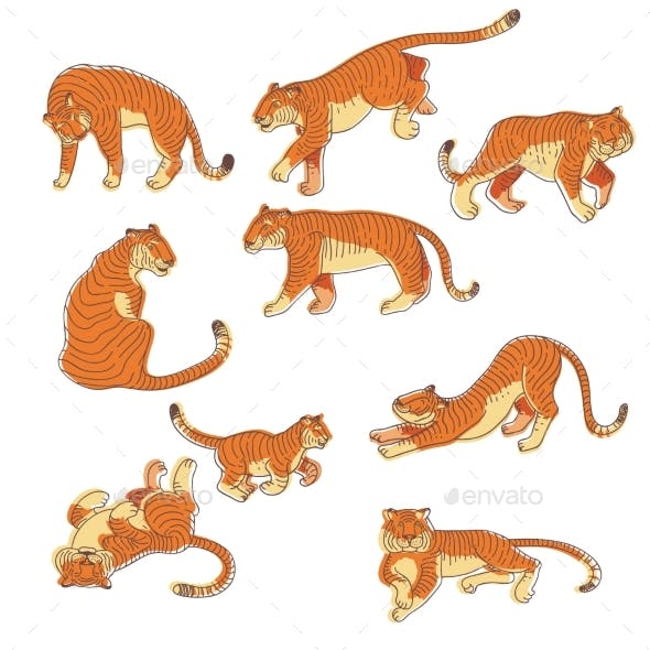Vector Set of Hand Drawn Tigers