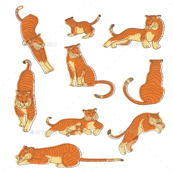 Vector Set of Hand Drawn Tigers - Animals Characters