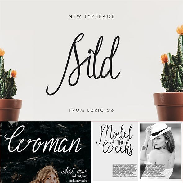 Sild Beauty Font - Modern Handwriting Feminism Signature