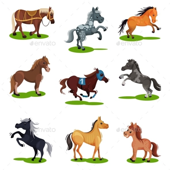 Flat Vector Set of Horses in Various Poses - Animals Characters