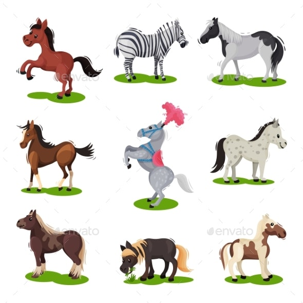Flat Vector Set of Different Horses - Animals Characters