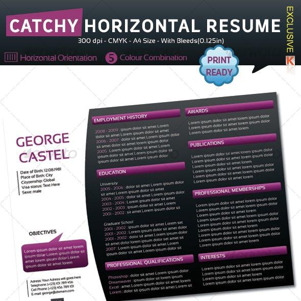 Catchy Horizontal Resume