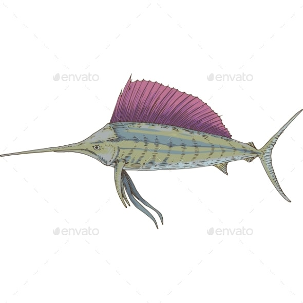 Gray Sailfish with Violet Fin - Animals Characters