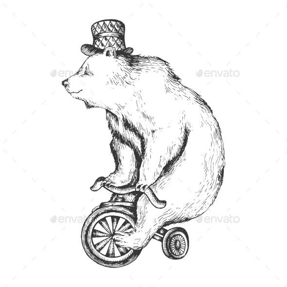 Bear on Bicycle Sketch Engraving Style Vector - Miscellaneous Vectors