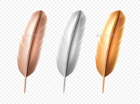 Set of Isolated Bird Realistic Feather Quill - Animals Characters