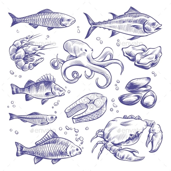 Seafood Hand Drawn - Animals Characters