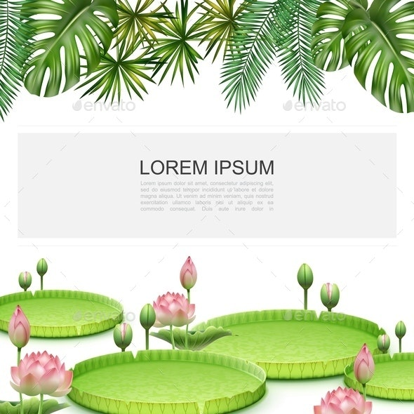 Realistic Tropical Plants Colorful Template - Flowers & Plants Nature